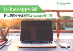 WHATSAPP自動化軟件, WhataReply -03